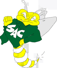 sacramento-state-hornets_t.png